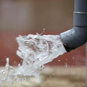 Jak mohou Brňané šetřit pitnou vodou?