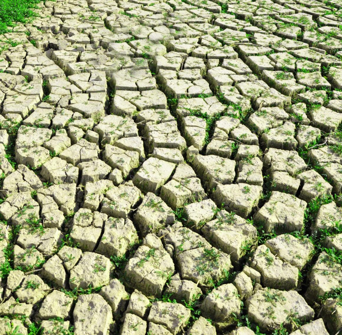 Lze řešit problém se zásobou pitné vody?