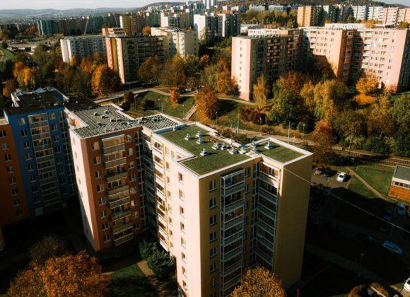 Zelené střechy v Brně jedou. Sklízí jeden úspěch za druhým.